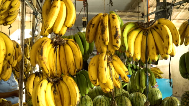 Bananas in the fruit market video