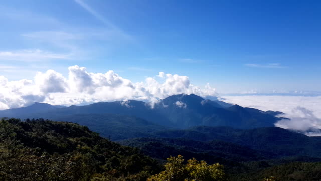バンフ国立公園霧の山と森の朝の眺め ビデオ