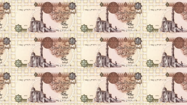 Banknotes of one egyptian pound of Egypt rolling, cash money, loop video