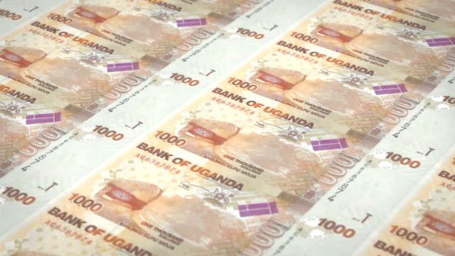 Banknotes of one thousand Ugandan shilling of Uganda, cash money, loop video