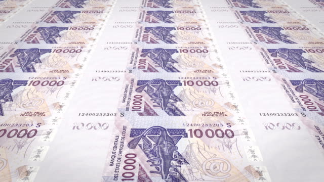 Banknotes of ten thousand West African CFA francs of Africa, cash money, loop video