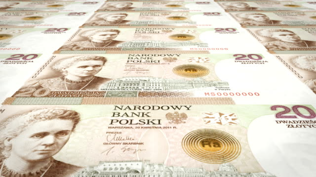 Banknotes of twenty polish zlotys of Poland rolling, cash money, loop video