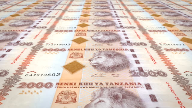 Banknotes of two thousand Tanzanian shilling of Tanzania, cash money, loop video