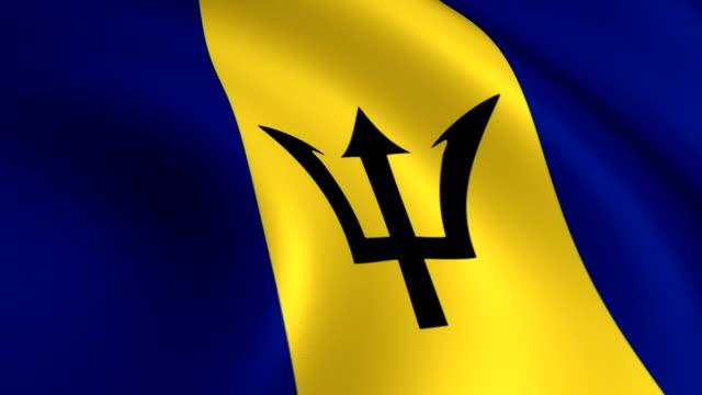 Barbados Flag Loopable video