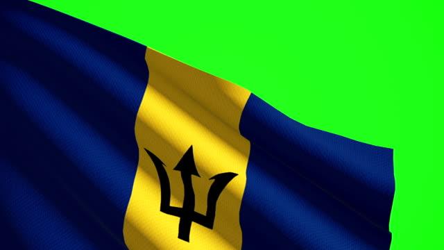 Barbados flag Luma matte video