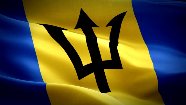 barbados flag motion loop video waving in wind. realistic barbadian flag background. barbados flag looping closeup 1080p full hd 1920x1080 footage. barbados asia country flags footage video for film,news - kiss filmów i materiałów b-roll