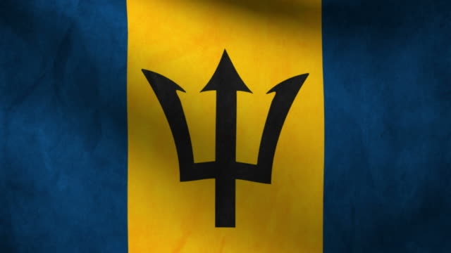 Barbados flag. video