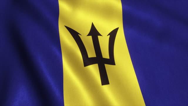 Barbados Flag Video Loop - 4K video