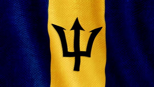 Barbados flag waving animation video