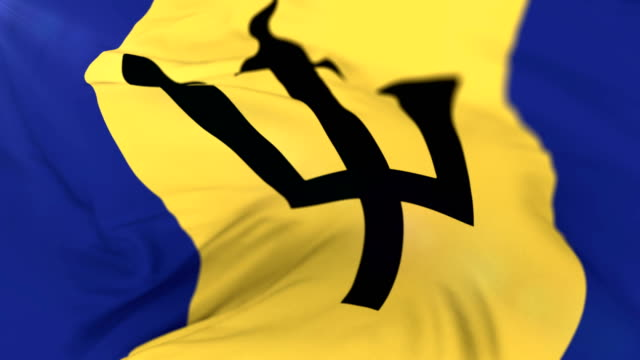 Barbados flag waving at wind, loop video