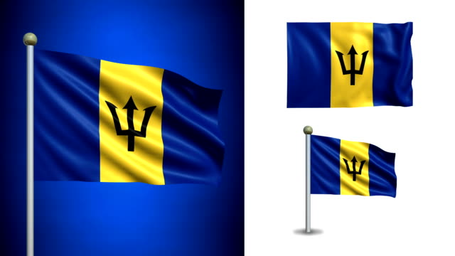 Barbados flag - with Alpha channel, seamless loop! video