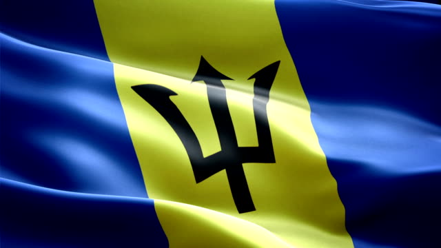 Barbados national flag. (New surge and lighting effect) video