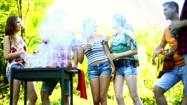 Barbecue party. video