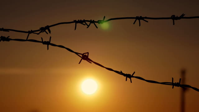 Barbed wire at sunset in the wind barbed wire prison sunset orange background military private stock videos & royalty-free footage