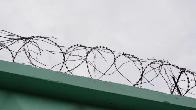 Barbed wire in prison. Jail wire with barb. Green fence with barbed wire against grey sky.