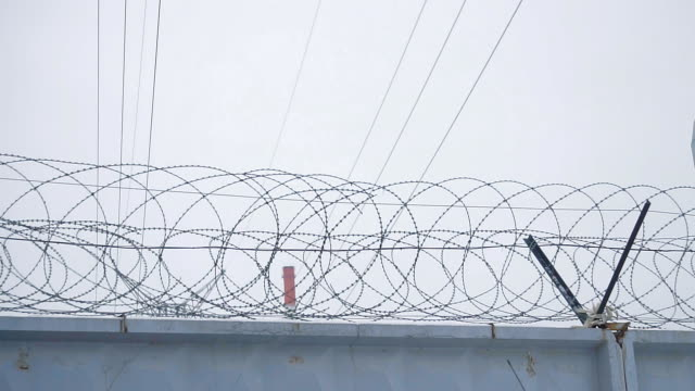 Barbed wire on concrete fence video