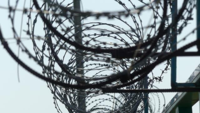barbed wire on the fence. prison fence. - prigione video stock e b–roll