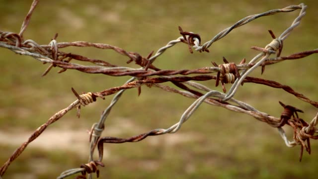 Barbwire Fence video
