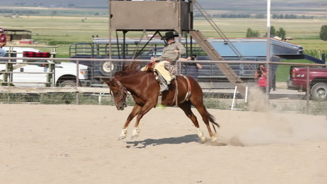 bareback rodeo slow motion - rodeo stock videos and b-roll footage