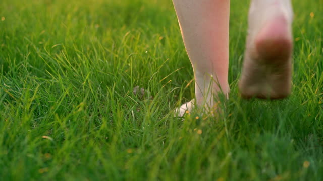 vídeos de stock e filmes b-roll de barefoot woman seen by feet only walks on green grass - descalço