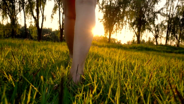 barefoot woman walking on grass - grass isolated video stock e b–roll
