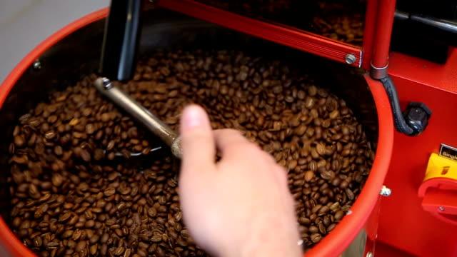 vídeos de stock e filmes b-roll de barista inspects and roasts coffee beans. person checks the quality of freshly roasted coffee beans - coffee table