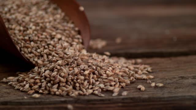 注いで、大麦スローモーションします。 - 大麦点の映像素材/bロール