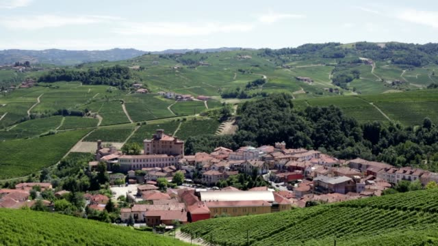 barolo town and langhe hills in summer in piedmont, italy - langhe video stock e b–roll