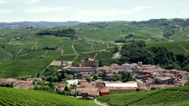 barolo town and langhe hills panning in summer in italy - langhe video stock e b–roll