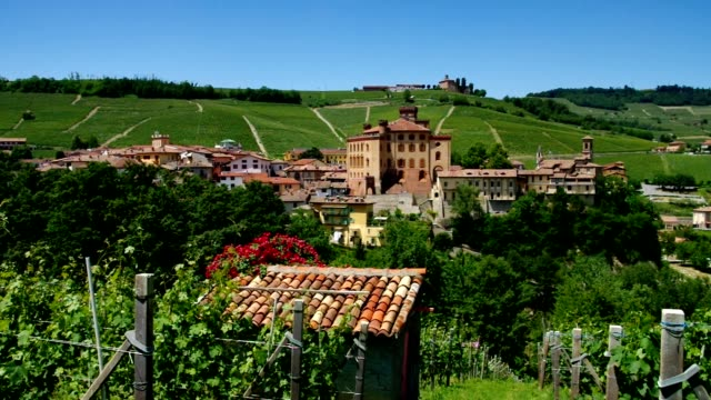 barolo - langhe video stock e b–roll