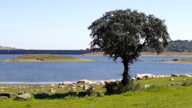 vídeos de stock e filmes b-roll de barragem do caia dam in alentejo, portugal - barragem portugal