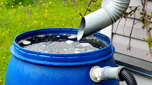 barrel rain drain pipe of a metal tube for draining the water flows rainwater in a plastic blue barrel on the background of green grass in a country house collection stock videos & royalty-free footage