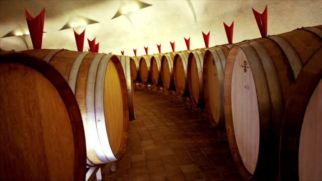 Barrels in a wine cellar video