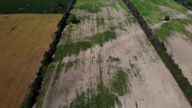 vídeos de stock, filmes e b-roll de campos agrícolas estéreis sem colheitas de drones. - erodido