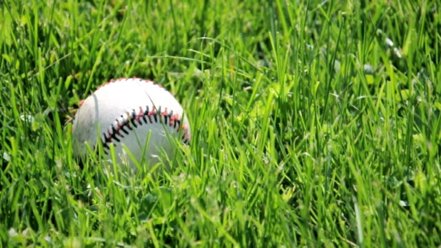 Baseball in Blowing Grass video