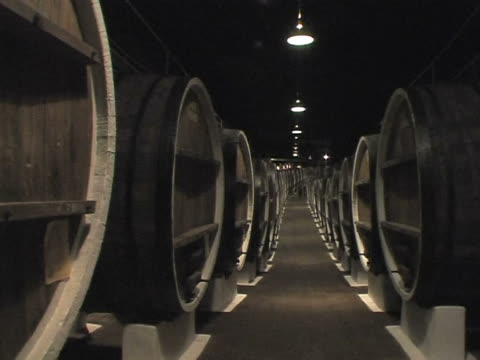 basement with raw wine video