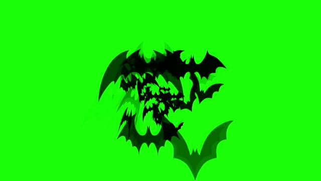 Bat flying background video