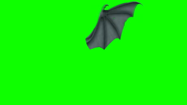 Bat or Dragon Wing Waving on a Green Screen Background Bat or Dragon Wing Waving on a Green Screen Background animal wing stock videos & royalty-free footage