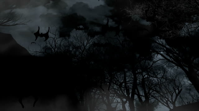 Bats flying through graveyard video