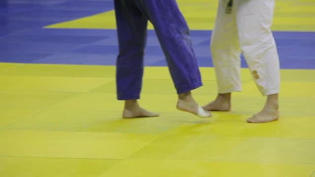 2 つの戦闘機の柔道の戦い。自分の足だけ ビデオ