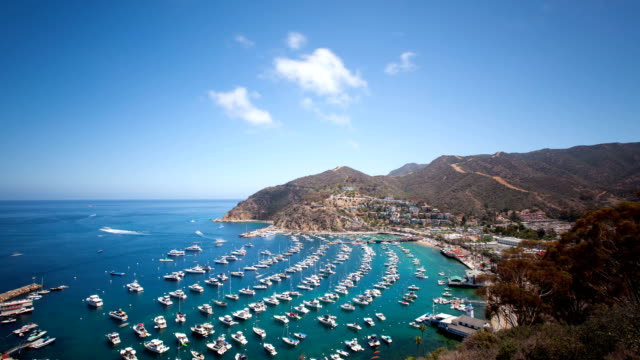 Bay and Town of Avalon on Catalina Island video