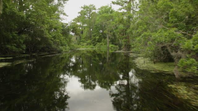 bayou river video