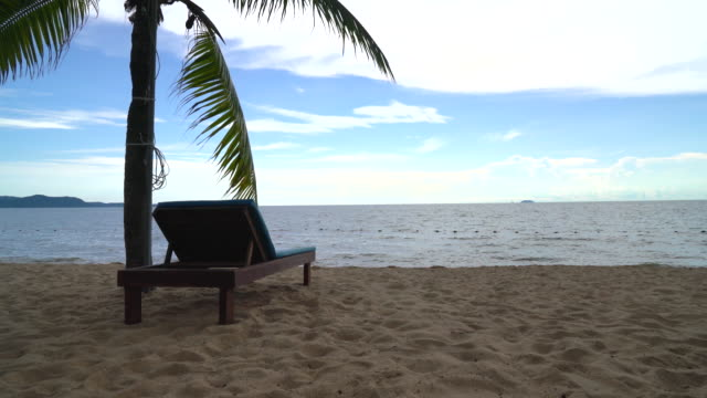 beach chair, palm and tropical beach at pattaya - white background стоковые видео и кадры b-roll