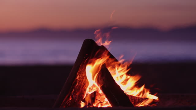 Beach Fire at Dusk - video