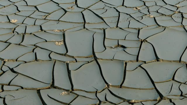 Beach full of dried-out clay cracked surface