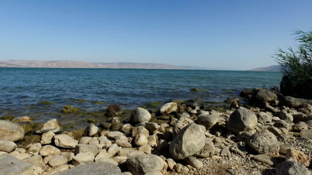 Beach Full of Rocks at Edge of Sea of Galilee video