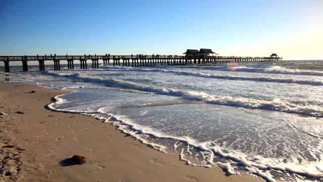 Beach in Naples, Florida video