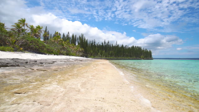 Beach Loyalty Islands Maré New Caledonia Natural beautiful untouched beach with turquoise water and coral reef under sunny blue summer sky on Maré Island, Loyalty Islands, New Caledonia, Pacific Ocean Islands. pacific islands stock videos & royalty-free footage
