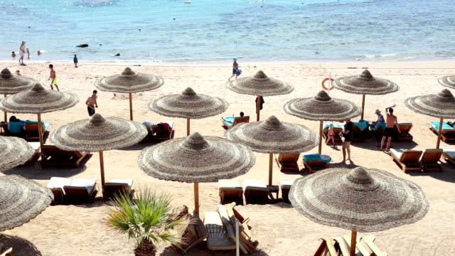 strand am roten meer. sharm el-sheikh. ägypten. - sun chair stock-videos und b-roll-filmmaterial