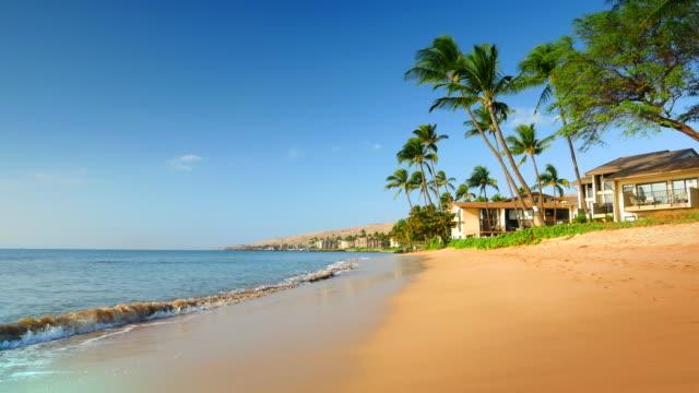 4K Beach on Tropical Island Coastline, Blue Ocean Sea, Palm Trees and Villas video